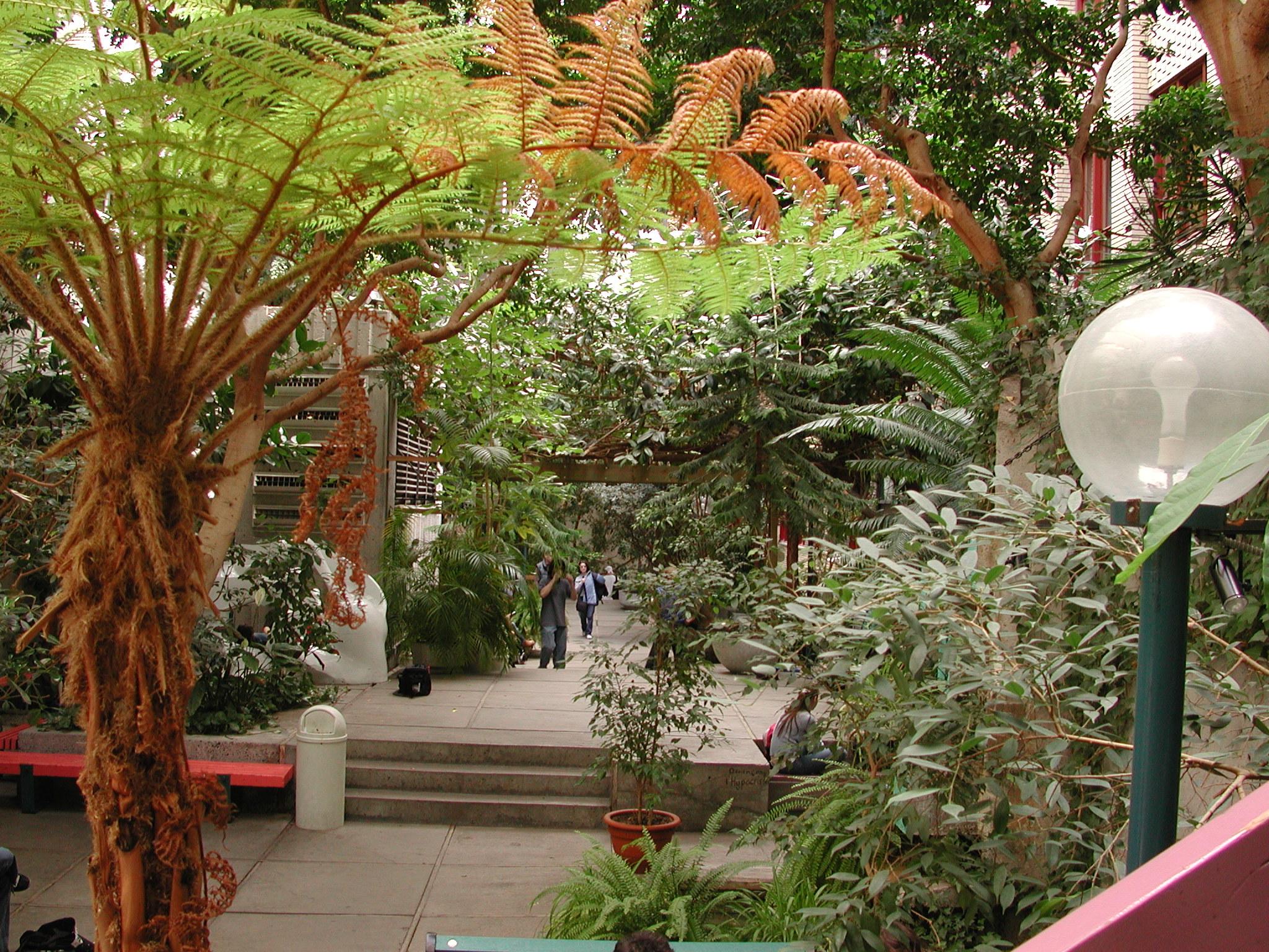 Jardin intérieur | Salle de réception en location | Collège de ...